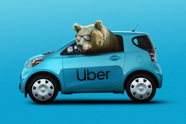 Bear and Uber